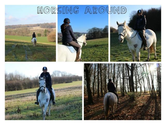 horsingaround