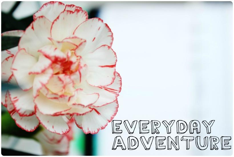 everydayadventure